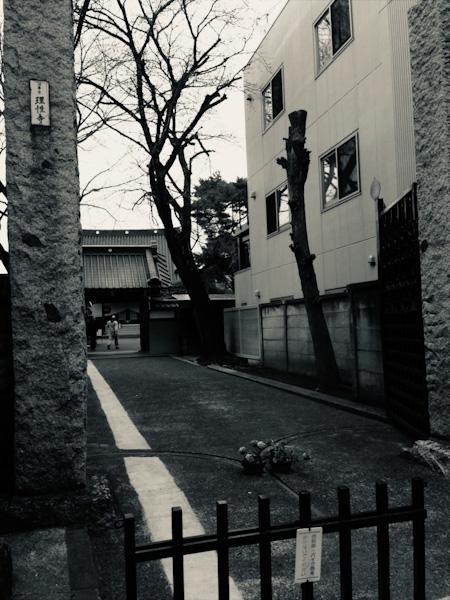 商店街の真中にあるお寺